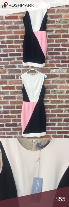 "Hunter Dixon Anthropologie Hunter Bell Dress 4 Colorblock dress. Black, pink, tan. 38"" long. Fully lined. 13"" across waist. 16"" across armpits. Brand new with tags. hunter dixon by Hunter Bell Dresses Mini"