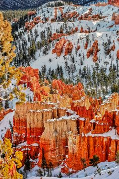 living-for-every-breath: Bryce Canyon, Utah (via: sublim-ature)