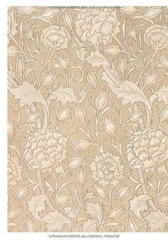 Art Nouveau: Amazon.de: Norbert Wolf: Fremdsprachige Bücher