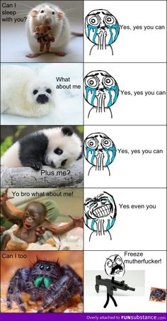 Different Reactions - Funny Monkeys - Funny Monkeys meme - - Different Reactions Funny Animal Quotes Different Reactions The post Different Reactions appeared first on Gag Dad. The post Different Reactions appeared first on Gag Dad. 9gag Funny, Funny Shit, Crazy Funny Memes, Stupid Funny Memes, Funny Relatable Memes, Hilarious, Funny Animal Jokes, Cute Funny Animals, Funny Animal Pictures