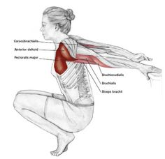 Assisted Reverse Shoulder Stretch - Common Neck & Shoulder Stretching Exercises | FrozenShoulder.com