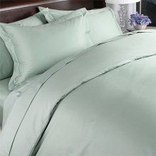 Luxury Sage/Mint Solid - 600TC Egyptian Cotton Bed Sheet Sets - Luxury Egyptian Cotton Bed Sheet Set -- Size Queen
