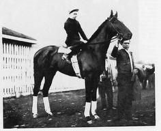 Whiskery - 1927 Kentucky Derby Winner