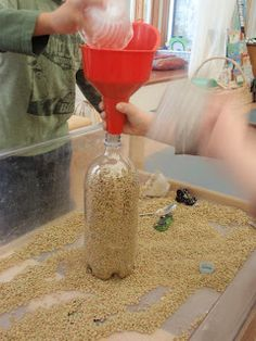 lentils in the sensory table