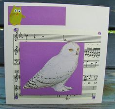 any occasion FWB by RogueKissedCraft Owl Card, Vintage Sheet Music, Snowy Owl, Rogues, Recycled Materials, Etsy Store, Birthday Cards, Recycling, Bird