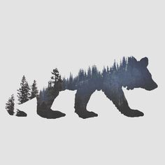 bear double exposure