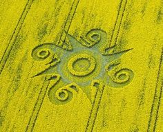 Crop Circles Roundway Hill (2), nr Devizes, Wiltshire_ Reported 10th May 2009 by kylepounds2001, via Flickr