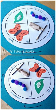 life cycle of a butterfly craft - Stay At Home Educator These bug and butterflies theme activities are perfect for preschool and kindergarten. These spring activities will keep your kids active and learning. Kindergarten Science, Preschool Learning, Preschool Crafts, Crafts For Kids, Fun Crafts, Paper Crafts, Preschool Bug Theme, Kids Educational Crafts, Nature Crafts