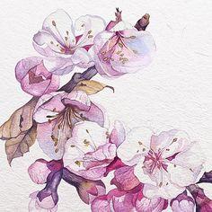 #watercolor #sakura