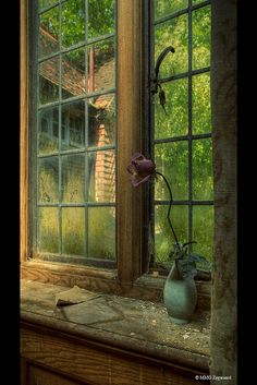 Window at Potter's Manor.  Photo by Martino ~ NL on Flickr.