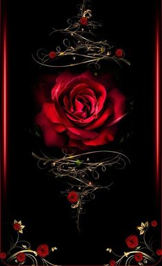 Beautiful tattoo idea of this Rose design Gothic Wallpaper, Heart Wallpaper, Cute Wallpaper Backgrounds, Cellphone Wallpaper, Flower Wallpaper, Beautiful Flowers Wallpapers, Beautiful Rose Flowers, Pretty Wallpapers, Wallpaper Bonitos