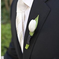 The Boutonnieres Hugh wore a simple, black, fitted suit and an off-white silk tie. His sleek boutonniere was a slender white tulip. Boutonnieres, Groomsmen Boutonniere, Groom And Groomsmen, Tulip Wedding, White Wedding Flowers, Prom Flowers, Free Wedding, Our Wedding, Wedding Ideas