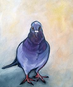 Day 7 -Pigeon