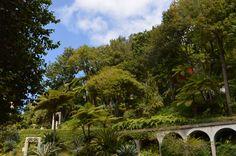 Jardin tropical de Monte