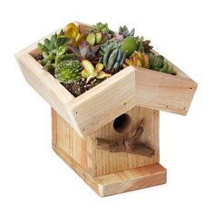 Grow sedums and succulents right on the roof! LIVING ROOF BIRDHOUSE KIT | Living Roof Bird House | UncommonGoods