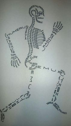 Made with the names of the bones