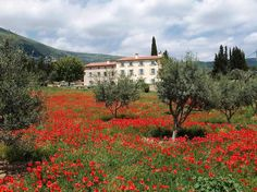 Luxury Villa Rentals, Hotels, Wedding Venues, Cote d'Azur, French Riviera, South France – Bastide St Mathieu