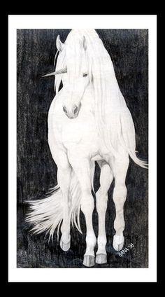 Unicorn by *7kadja7 on deviantART