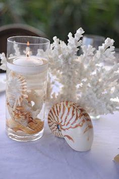Simple Seach Shell and Coral Centerpieces