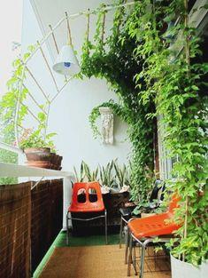 Terrace Garden Ideas India – Garden Post