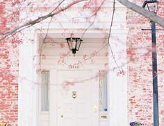 pink on white, stunning