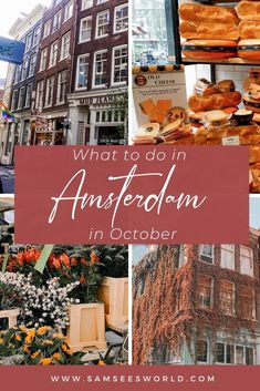 Top things to do in Amsterdam in October. Amsterdam travel tips for visiting in the fall. #Travel #Amsterdam #Thingstodo #Tips Travel Through Europe, Europe Travel Guide, Backpacking Europe, Europe Destinations, Travel Guides, Amsterdam Things To Do In, Visit Amsterdam, Amsterdam Travel, Amsterdam Itinerary