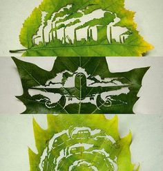 Man vs Nature