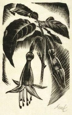 Image result for mervyn taylor printmaker New Zealand Art, Nz Art, Printmaking, Artwork, Artist, Image, Google Search, Art Work, Work Of Art