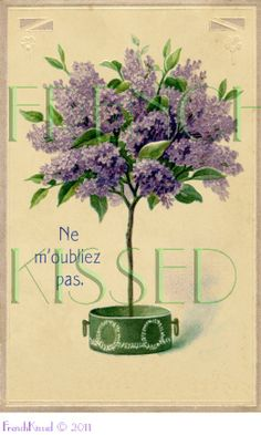 doll topiary | DIGITAL scan LILACS topiary tree Antique FRENCH Don't Forget Postcard ...