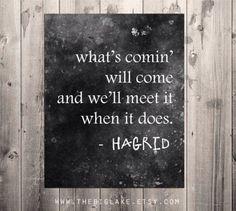 Hagrid | Harry Potter quotes fandom art home decor poster idea