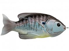 Blue/Metallic Bluegill Hollow Body Sunfish by Koppers Live Target Best Fishing Boats, Bass Fishing Tips, Fishing Line, Fishing Reels, Fishing Stuff, Tackle Warehouse, Topwater Lures, Fast And Slow, Lakeside Living