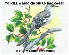 TO KILL A MOCKINGBIRD PACKAGE! Also, to see all my store: http://www.teacherspayteachers.com/Store/J-Mason-Emerson/Order:Best-Sellers/