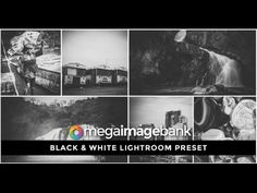 Black & White Lightroom Preset By Mega Image Bank