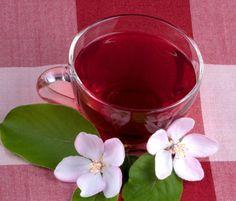 10 melhores chas emagrecer hibisco