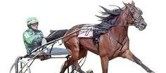 Iowa Harness Racing