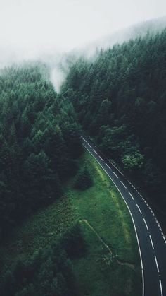 Tree wallpaper forest nature New ideas New Nature Wallpaper, Tree Wallpaper, Wallpaper Backgrounds, Iphone Wallpapers, Forest Wallpaper Iphone, Ocean Wallpaper, Wallpaper Ideas, Beautiful Roads, Beautiful Landscapes