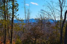 This is a great 4.959-acre tract of land in the Woolwine Area of Patrick County. It has some great views and with the clearing of a few more trees, the views would be even better. It is accessed by a deeded right-of-way off Lee Elgin Road. There are no restrictions so you could use it for almost any purpose. A spring begins where the two tracts join.