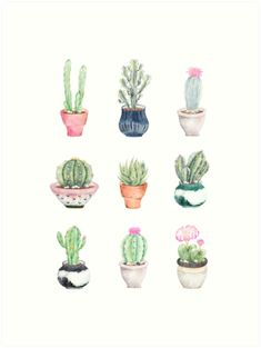 Succulents Mini Art Print by Bekka Campbell - Without Stand - x Succulents Drawing, Watercolor Succulents, Succulents Art, Succulents Painting, Succulents Wallpaper, Indoor Succulents, Propagating Succulents, Planting Succulents, Succulent Frame
