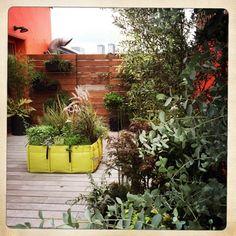 Conception d'une terrasse en ville par le paysagiste Jean-Michel Martin : palettes de bois pour habiller le sol et construire un mur de séparation avec le voisinage. Des jardinières installées au mur de palettes et des potagers BACSAC pour apporter de la couleur, comme ce modèle Avocado !