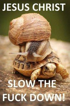 Slow down Bro, I get dizzy!