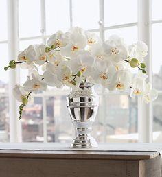 Martha Stewart White Phalaenopsis Orchid Bouquet