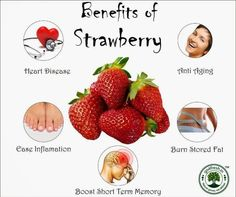 Strawberries are an extremely versatile, delicious fruit, but it should not be forgotten that there are also a number of health benefits of strawberries. Due to its ability to compliment numerous f… Broccoli Health Benefits, Strawberry Health Benefits, Online Health Store, Healthy Fruits And Vegetables, Smart Snacks, Strawberry Plants, Beautiful Fruits, Delicious Fruit, Natural Energy