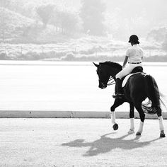 Dressage is so beautiful :)