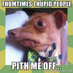 Thquirrel - Thumtimes Thupid people  Pith Me off...