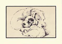 Antique MATTED Dog Print, 1930s Terrier Lucy Dawson, 5x7 Mounted Print Puppy Print, black & white Wall Decor Interior Design, B-4