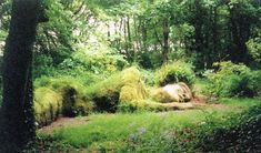 Must see:  The lost Gardens of Heligan in Cornwall.  I bet we could replicate some of these concepts, on a smaller scale of course.. I would love to see it in Cornwall!!