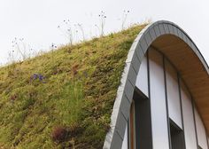 A layer of grasses, herbs and flowers blankets the roof of this hump-shaped house near Reims, France