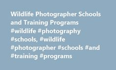 Wildlife Photographer Schools and Training Programs #wildlife #photography #schools, #wildlife #photographer #schools #and #training #programs http://hawai.remmont.com/wildlife-photographer-schools-and-training-programs-wildlife-photography-schools-wildlife-photographer-schools-and-training-programs/  # Wildlife Photographer Schools and Training Programs Prospective wildlife photographers may find a class in this specialty through a certificate or degree program in general photography. Read…
