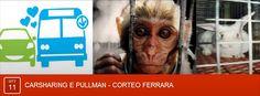 Organizzazione pullman e auto condivise per il corteo contro la vivisezione a #Ferrara 11.10.14 http://nostabularioferrara.blogspot.it/2014/08/organizzazione-pullman-e-auto-condivise.html #NOstabularioFerrara