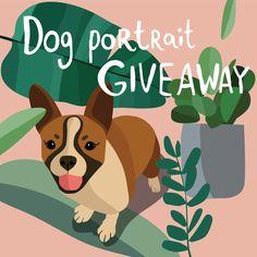#dogs #dogstagram #doglover #dog #dogoftheday #giveaway